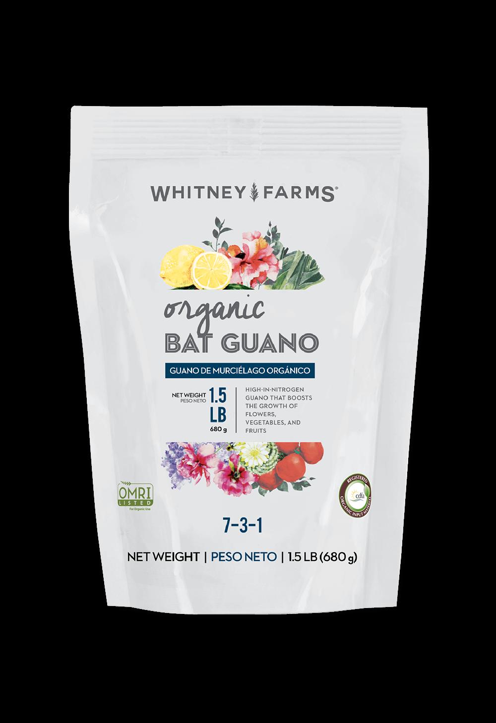 Bat Guano